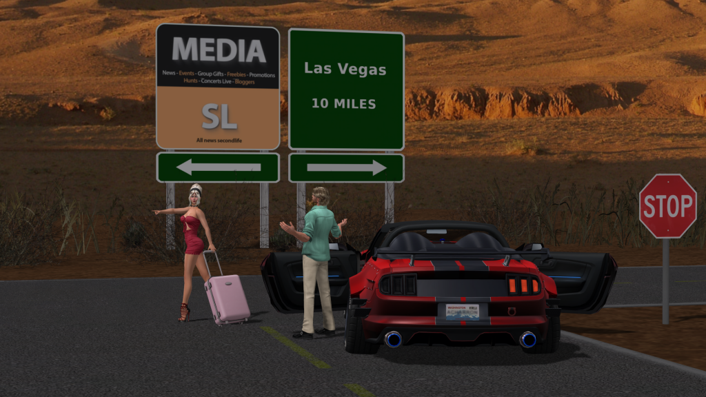 Image submitted for the Media SL contest
